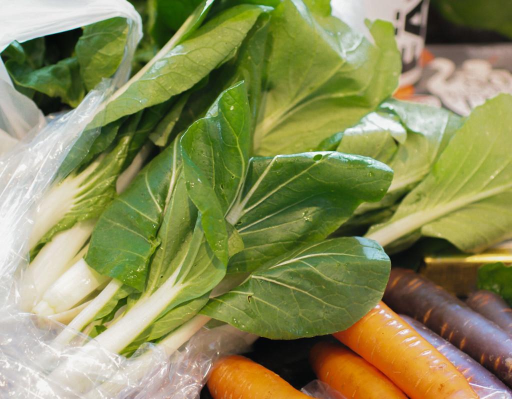 Leafy green bok choy