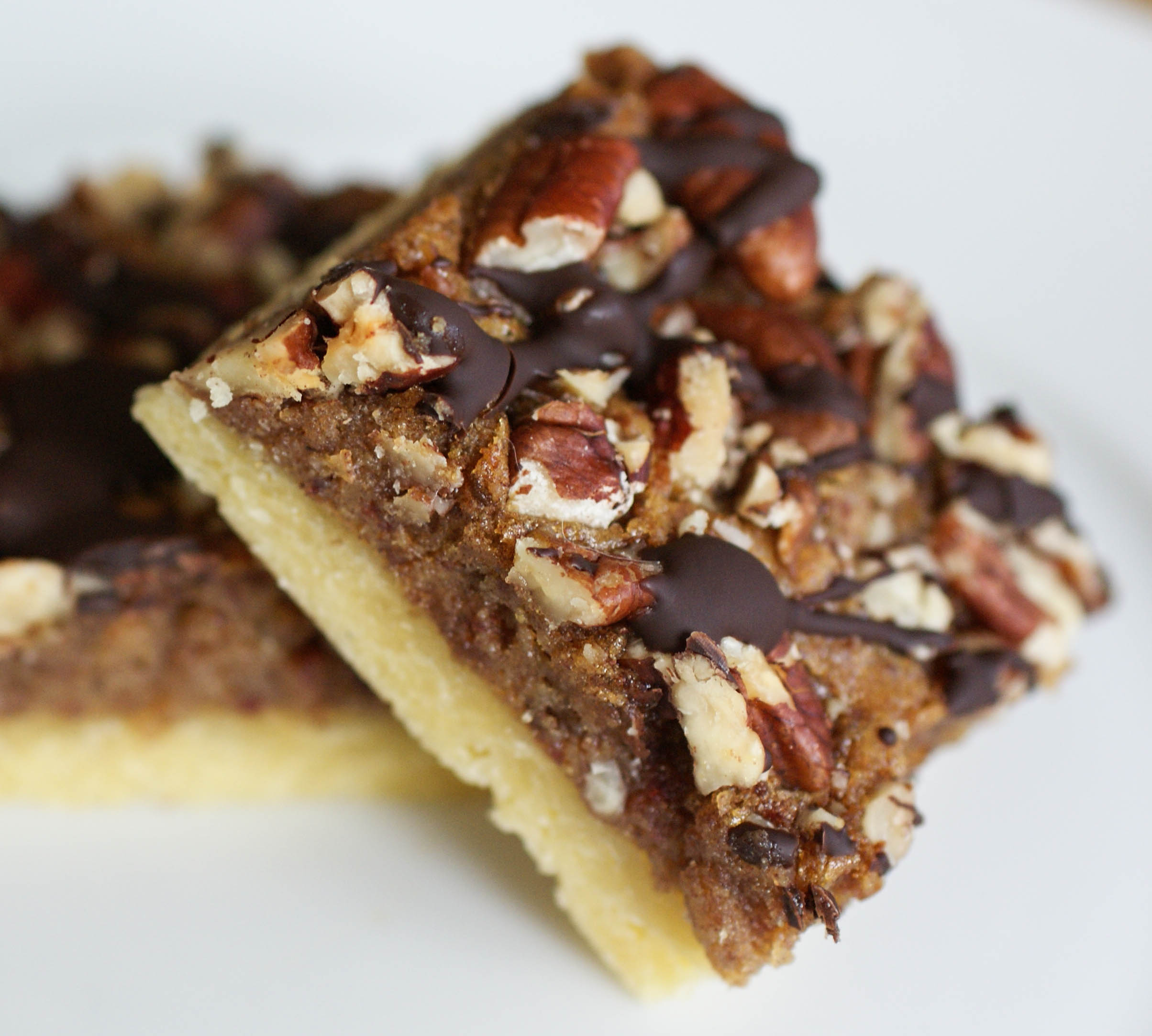 Chocolate Pecan Pie Bars and a Dinner Guest | Swiss Paleo