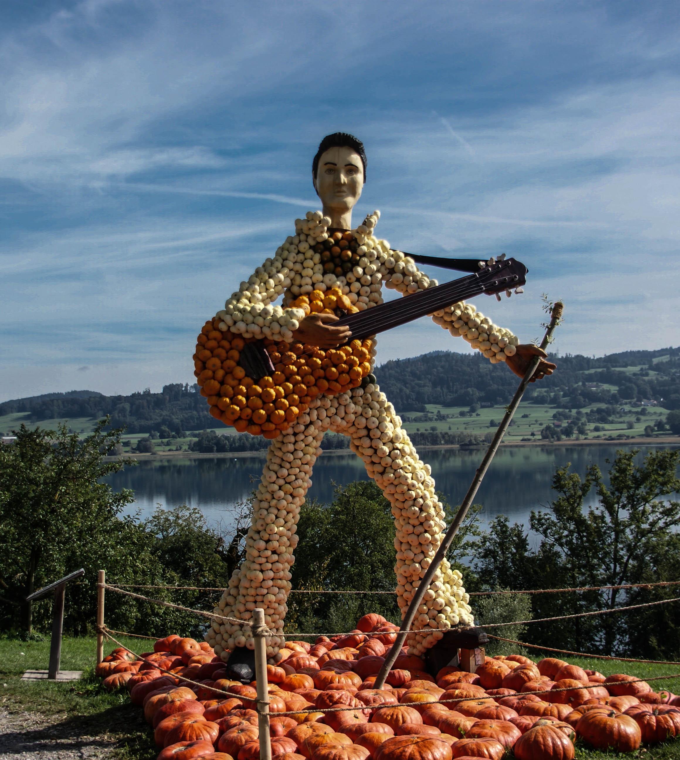 Elvis visits the farm!