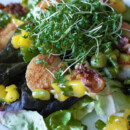 Seared Scallop Salad with Bacon Crisps and Mango Salsa