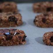 Chocolate Chunk Lara Bars